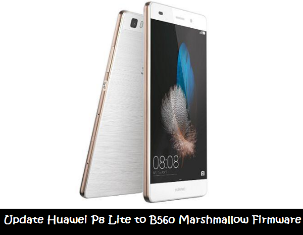 Update Huawei P8 Lite to B560 Marshmallow Firmware