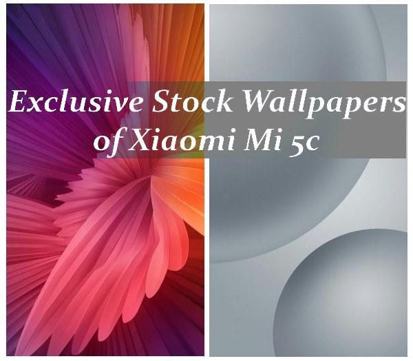 Exclusive Stock Wallpapers of Xiaomi Mi 5c in HDQ